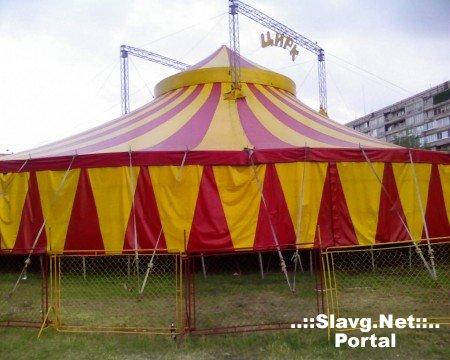 Золотой цирк-шапито уехал из Ярового с потерями