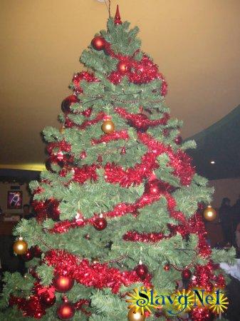 Фотоконкурс - Моя новогодняя елка