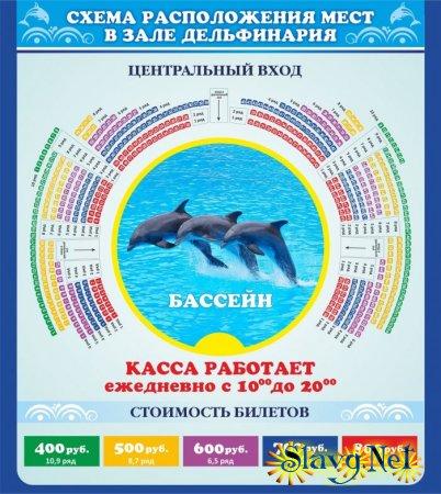 Дельфинарий на Яровом